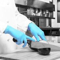 Polyco GL895 Blue Nitrile PF™ Disposable Gloves